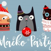 Mačko party