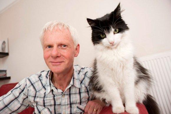 Mačke vide vlasnike kao divovske – mačke