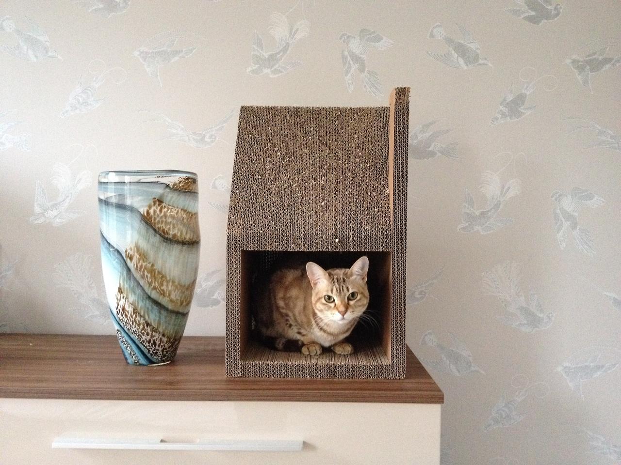 Krabhuis – kartonska kućica za vašu mačku