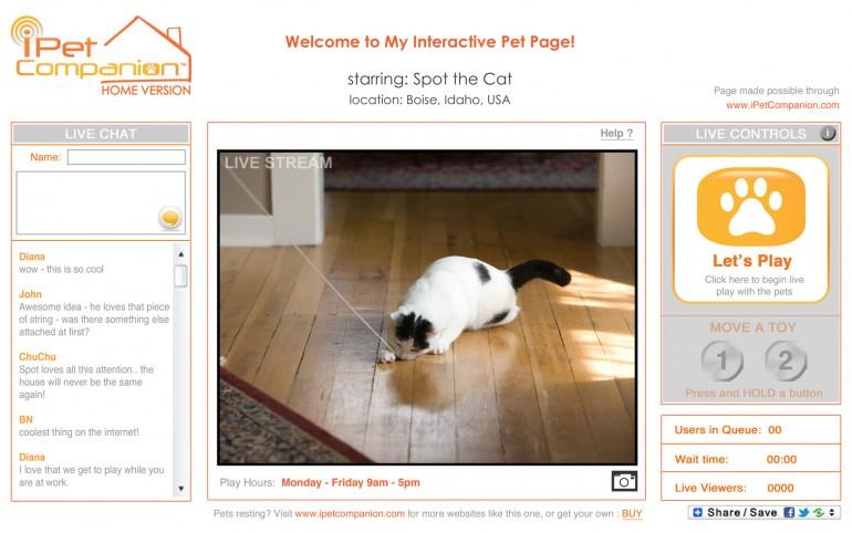 Za alergičare – igrajte se s mačkama preko Interneta