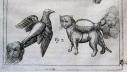 Mačke sa vatrenim ruksacima? Da, u 16. stoljeću!