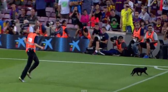 Barcelona – Elche 3:0 uz asistenciju crne mačke