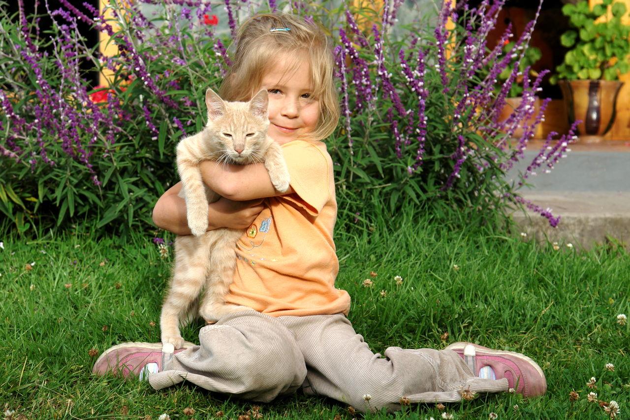 Suživot mačke i djeteta