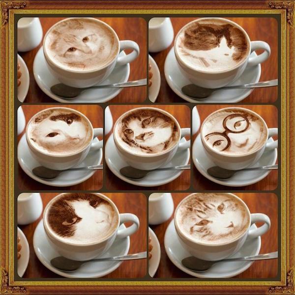 Fotorealizam u šalici kave sa motivom mačke? Da, u Japanu!