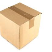 Mačka i kutija