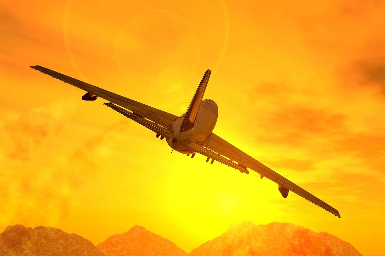 Vodite mačku na put zrakoplovom? Pročitajte nekoliko bitnih savjeta!