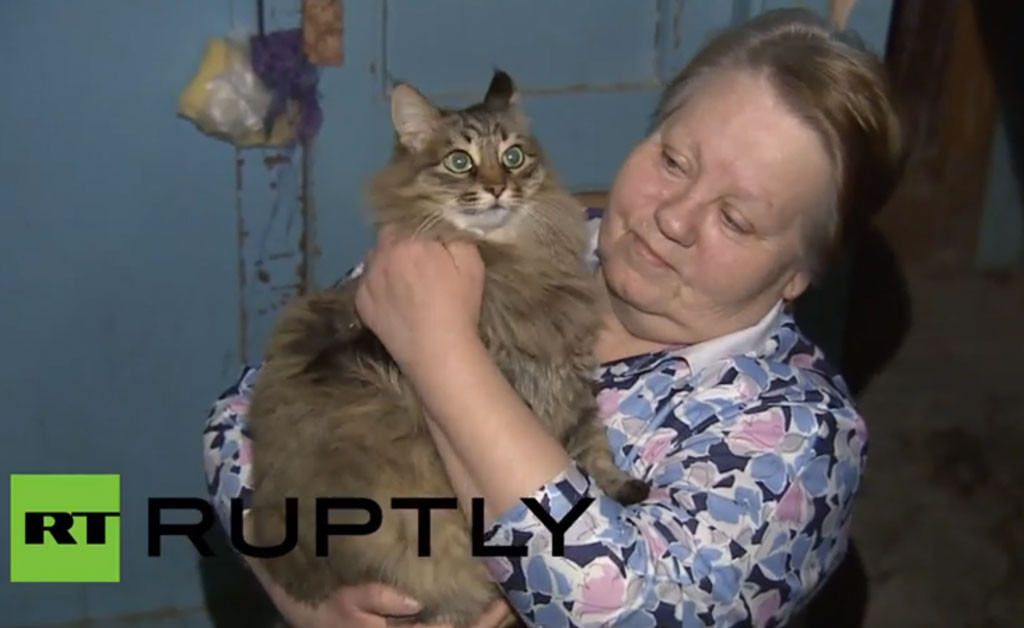 Mačka heroina spasila napuštenu bebu