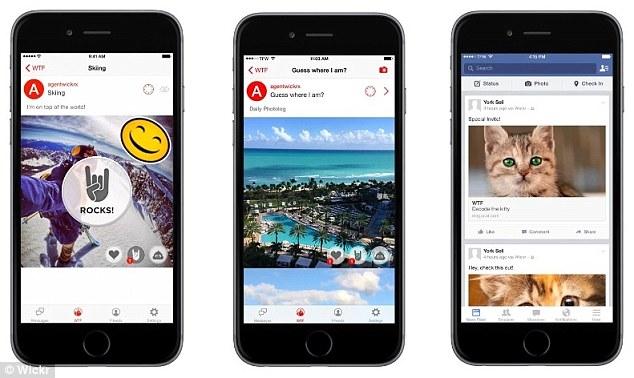 Fotografijama mačaka do privatnosti na društvenim mrežama