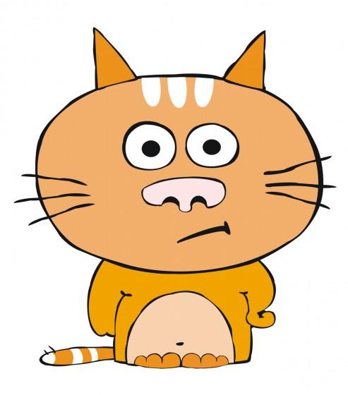 Nezadovoljna mačka