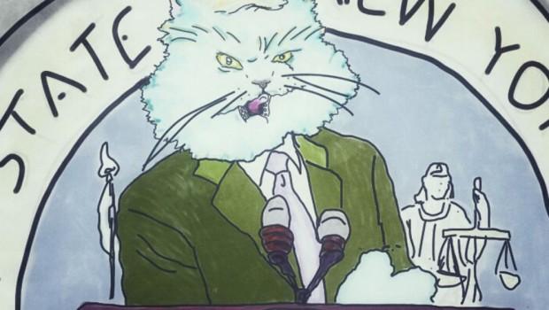Američki senatori kao mačke