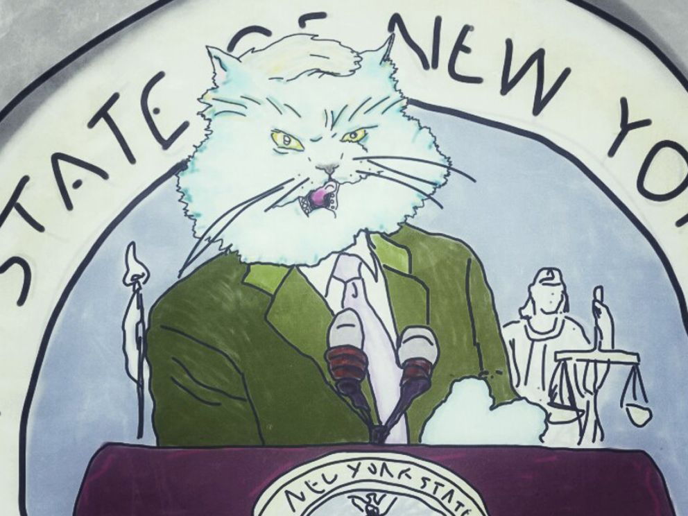 Senator u liku mačke