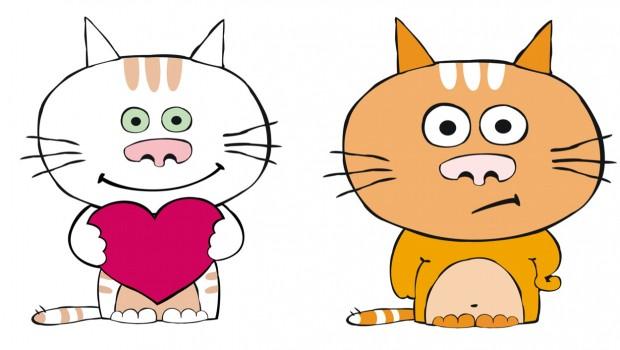 Što vi radite, a vaše mačke obožavaju ili mrze?