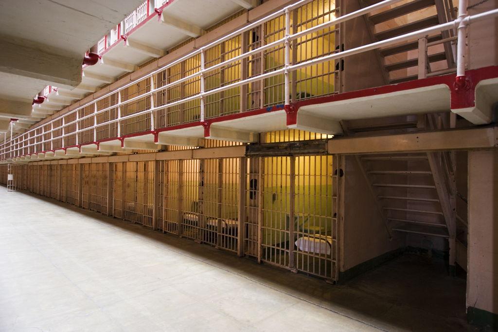 Mačke se u zatvoru pripremaju za novi život