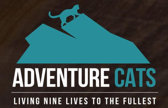 Upoznajte avanturističke mačke
