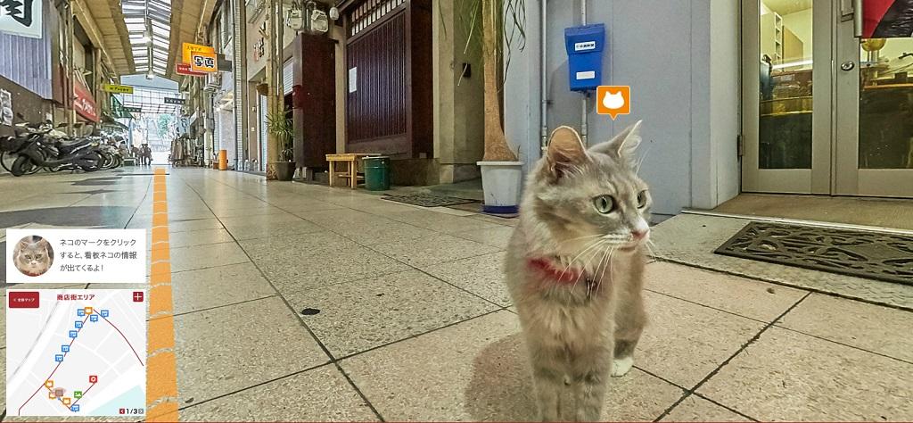 Hiroshima cat's street view – šetnja ulicama mačjim očima
