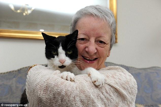 Mačak nanjušio tumor na vlasnici i spasio joj život