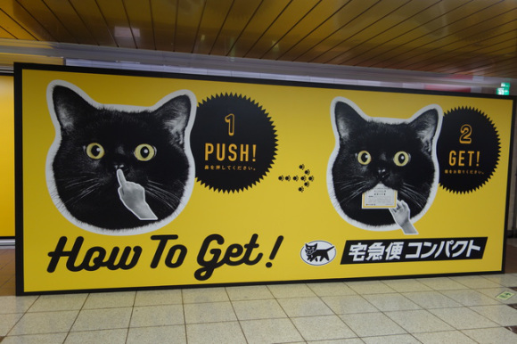 Protrljajte mački nos i dobit ćete poklon