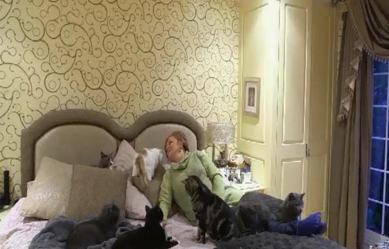 Upoznajte Silvanu koja ima 90 mačaka i troši 90.000 funti na njih