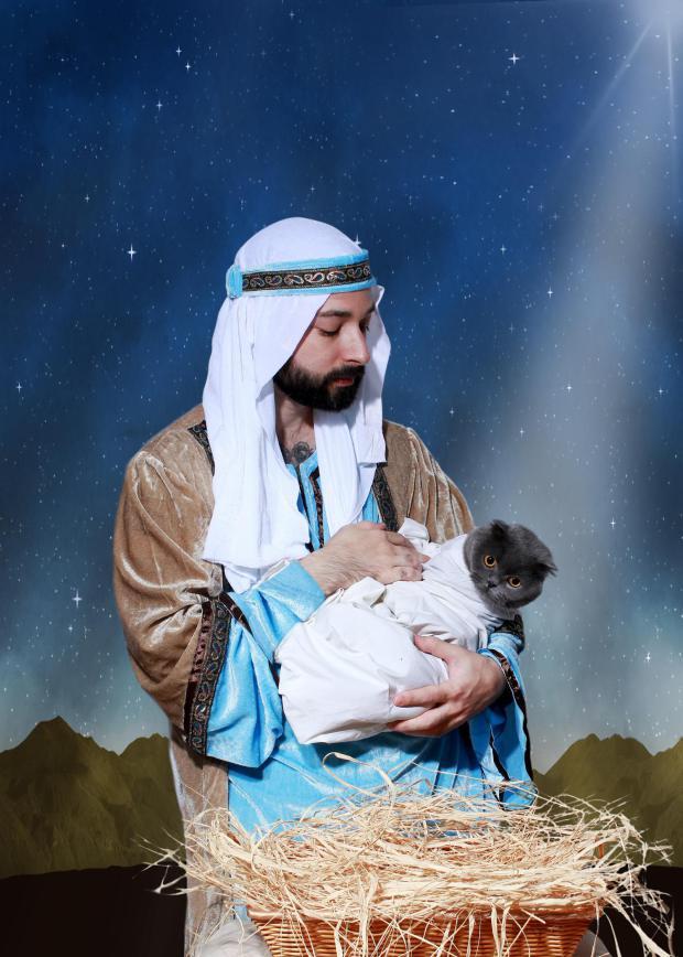 Neobična božićna čestitka s mačkom