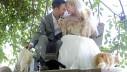 Par na vjenčanje pozvao preko tisuću mačaka