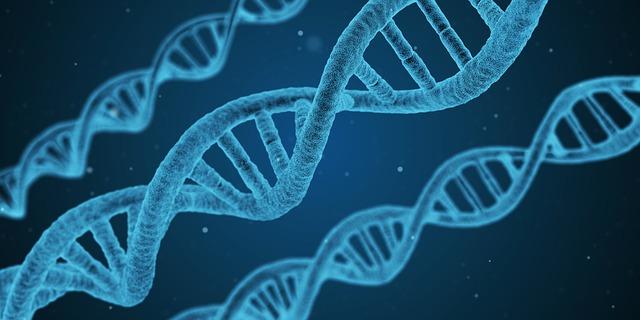 Kako geni utječu na nasljeđe i razvoj mačaka?