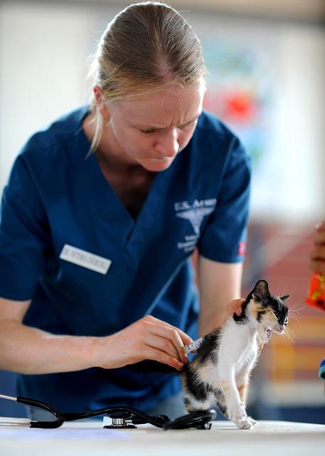 Izbor veterinara