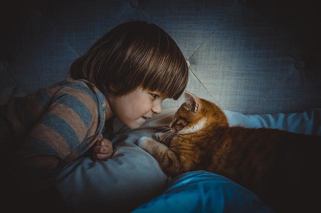 cat child photo
