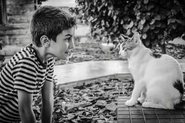 cat kid photo